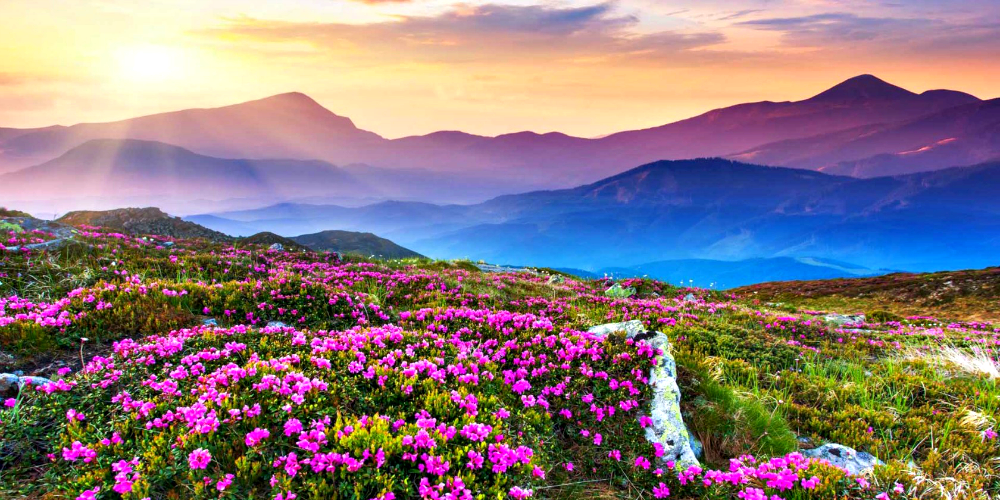 8 Best Places to Visit in Spring Season in India